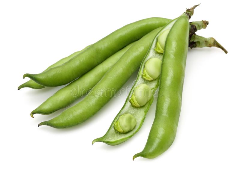 Fresh green beans isolated on white. Background royalty free stock photos