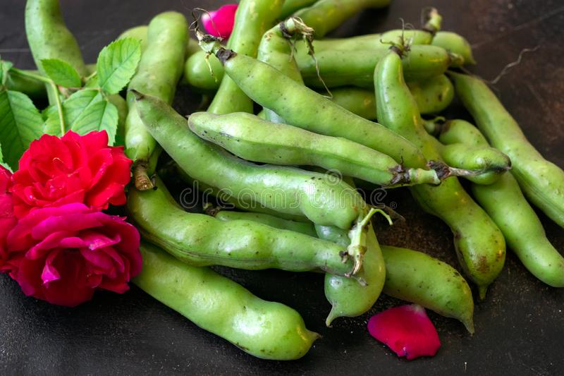 Fresh green beans of milky ripeness on the table stock photo