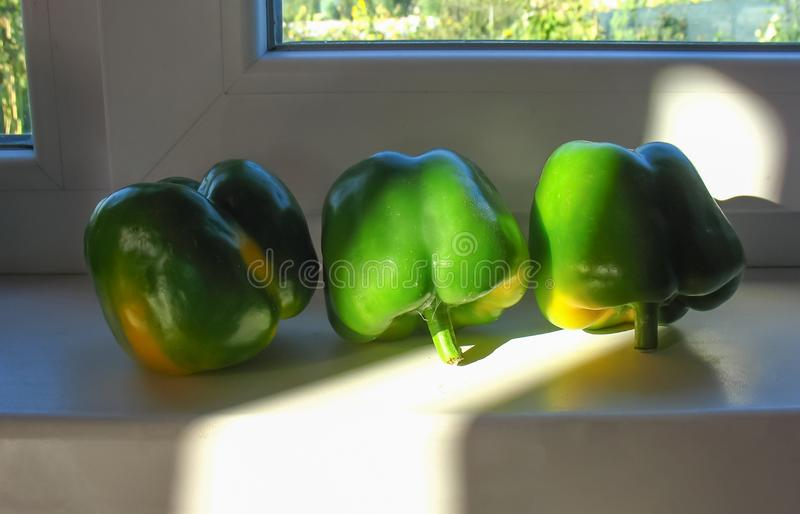 Green Bell Peppers in the kitchen. Fresh green bell peppers in the kitchen, nature light royalty free stock image