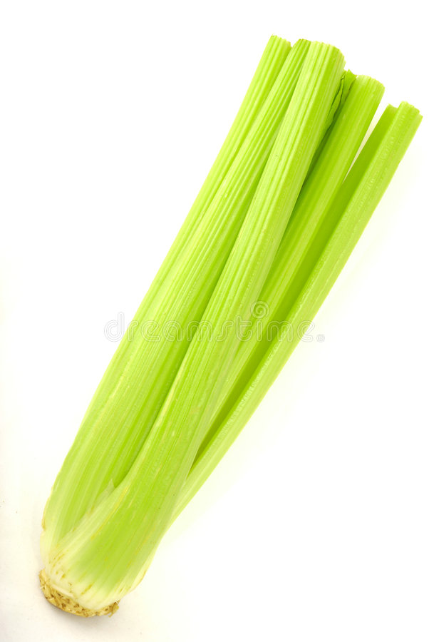 Free Fresh Green Celery Isolated On White Stock Photography - 8285812