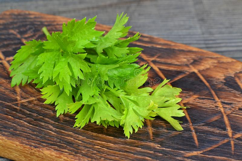 Fresh green celery stems on wooden rustic vintage cutting board. Healthy diet food royalty free stock photo