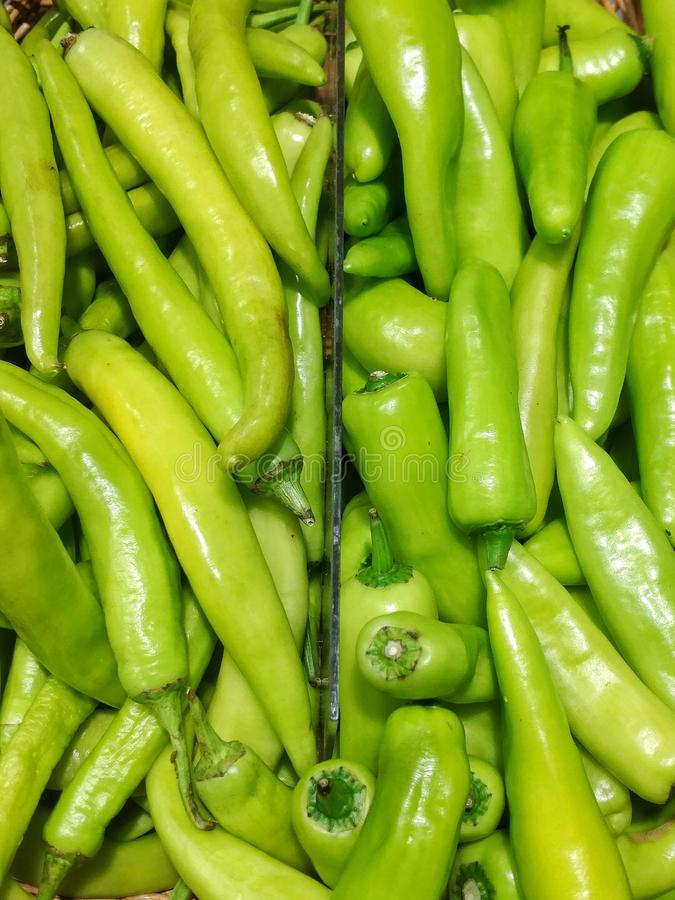 Fresh green chillies in the basket royalty free stock photo