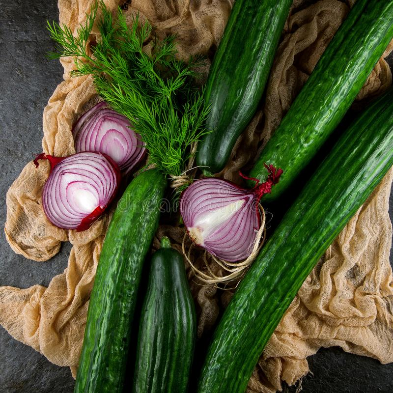 Fresh green cucumber with red onions and dill herbs stock images