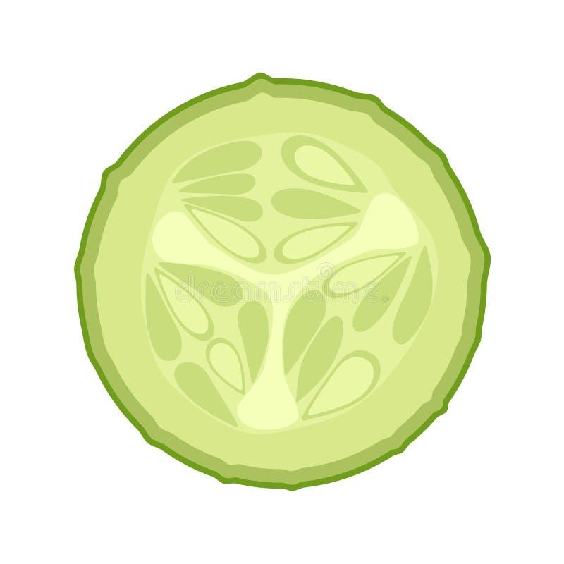 Fresh green cucumber slice vector illustration