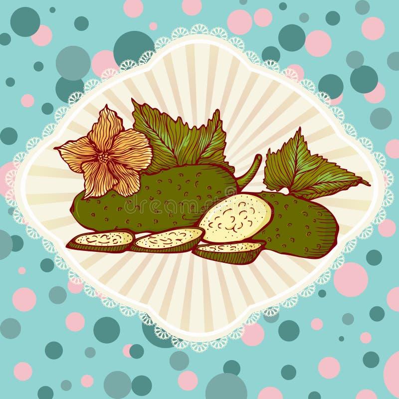 Fresh green cucumbers vector illustration