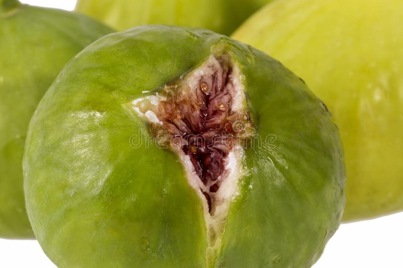 Fresh green figs isolated on white background, close up stock image