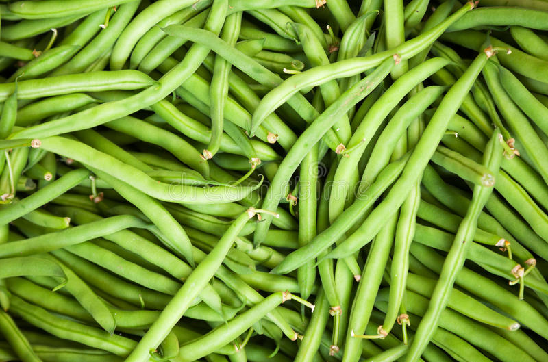 Fresh green French bean. Background royalty free stock photo