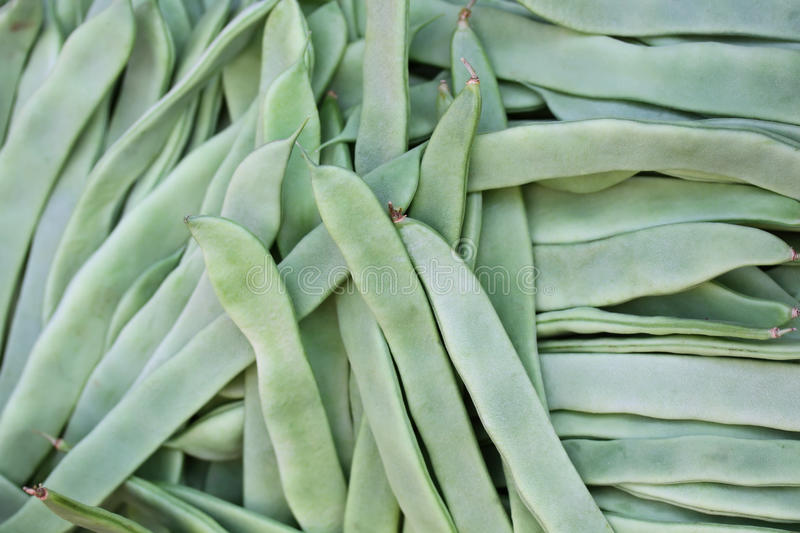 Fresh green French bean. Background stock images