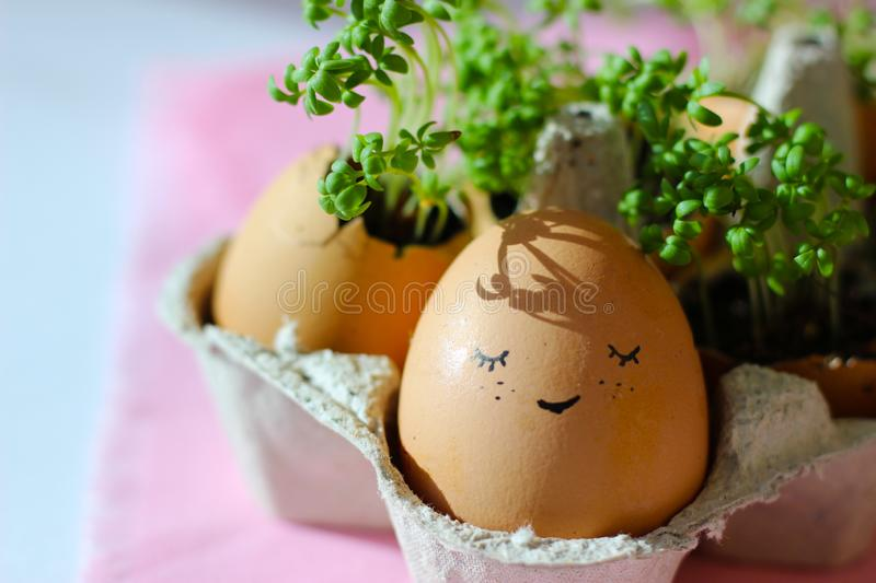 The fresh green grass growing in an egg shell with the funny persons drawn on it. The idea of spring creativity for stock images