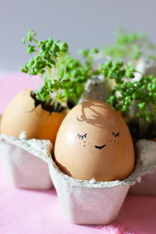 The fresh green grass growing in an egg shell with the funny persons drawn on it. The idea of spring creativity for stock image