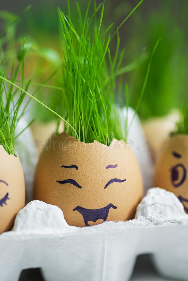 The fresh green grass growing in an egg shell with the funny persons drawn on it royalty free stock photography