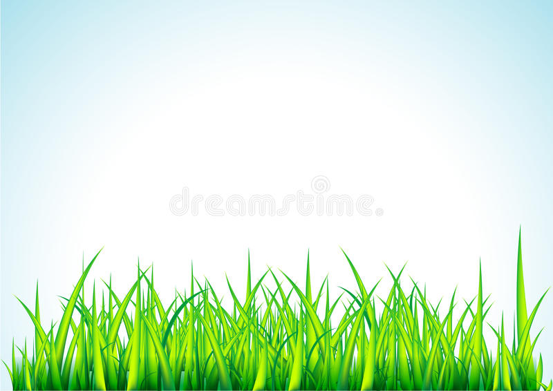 Download Fresh Green Grass Illustration Stock Vector - Illustration of grass, decorative: 11794100
