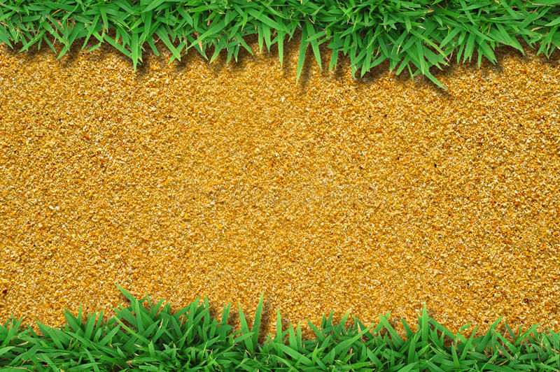Download Fresh Green Grass On Sand Royalty Free Stock Image - Image: 25773886