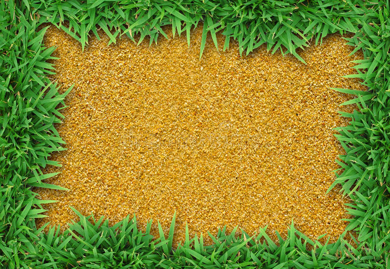 Download Fresh green grass on sand stock image. Image of fresh - 25773897