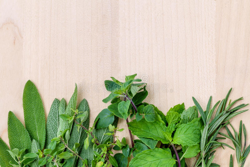 Fresh green herbs harvest from garden stock photos