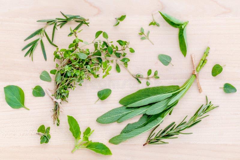 Fresh green herbs harvest from garden . royalty free stock photos