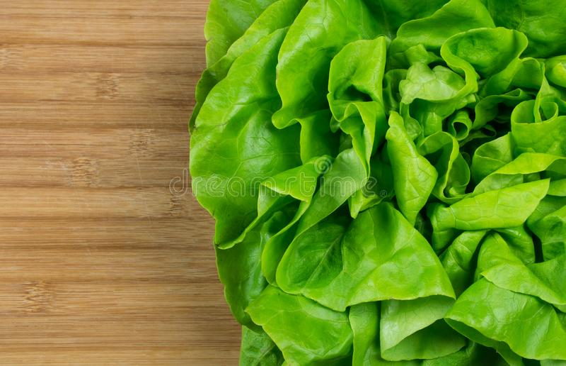 Fresh green leaf vegetable lettuce on light brown background cod board. royalty free stock photo