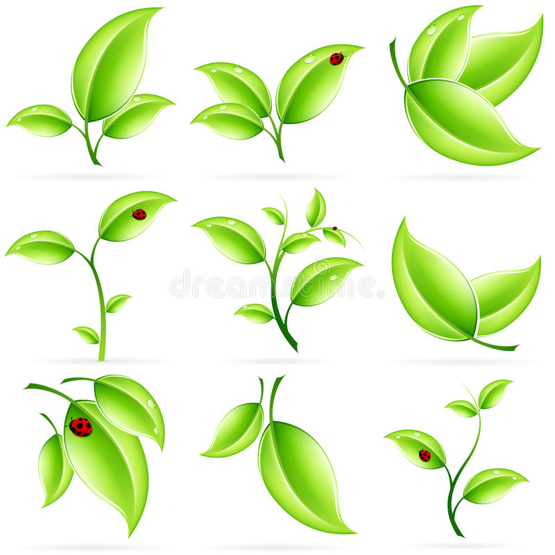 Download Fresh Green Leaves Icon Set Stock Vector - Image: 25280910