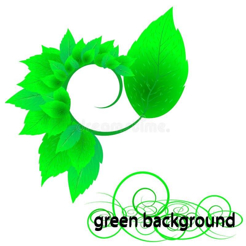 Fresh green leaves stock images