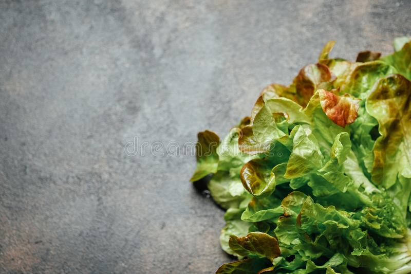 Fresh green lettuce salad. On a dark background top view copy space royalty free stock photography