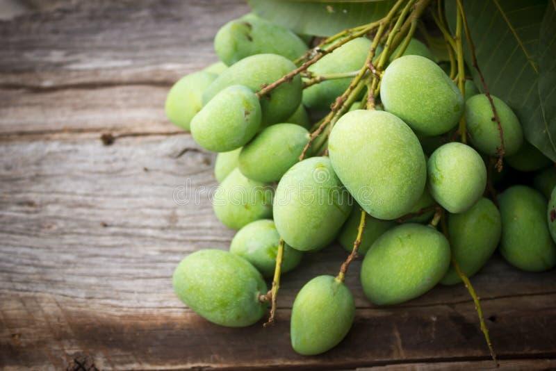 Fresh green mango. royalty free stock photography