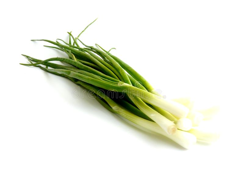Fresh green onion isolated over white royalty free stock images