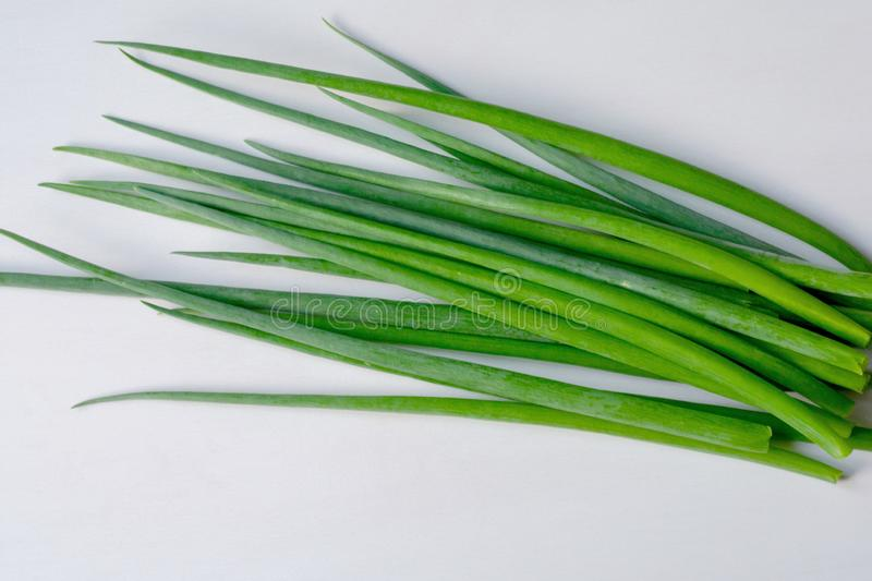Fresh green onions isolated on white background stock image