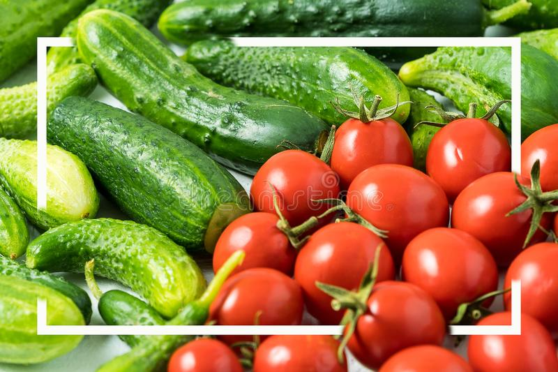 Fresh green organic cucumber and red tomato background with white Square frame royalty free stock images