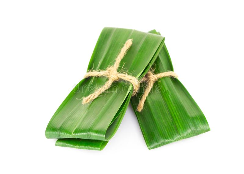 Fresh green pandan leaves isolated on white background. Fresh green pandan leaves isolated stock images