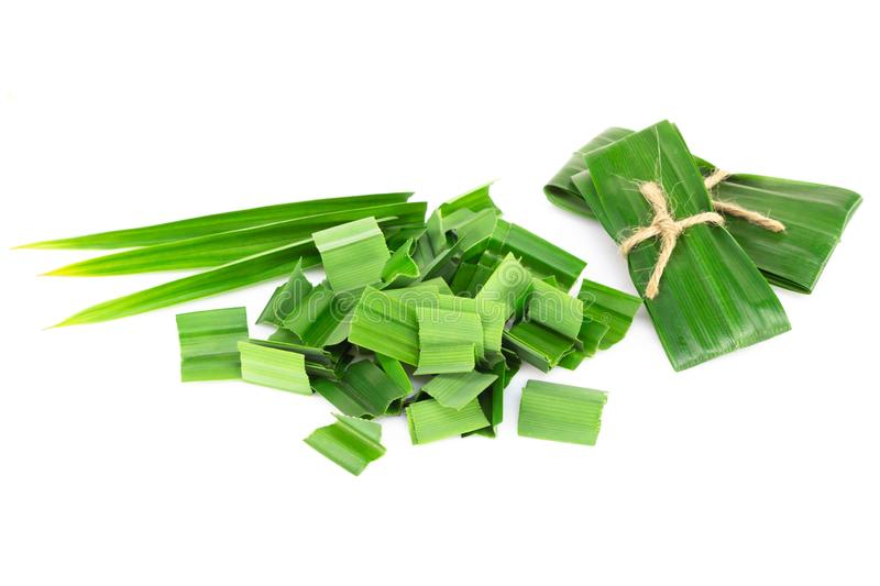 Fresh green pandan leaves with slice isolated on white background. Fresh green pandan leaves with slice isolated royalty free stock photography