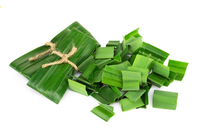 Fresh green pandan leaves with slice isolated on white background. Fresh green pandan leaves with slice isolated stock image