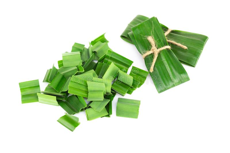 Fresh green pandan leaves with slice isolated on white background. Fresh green pandan leaves with slice isolated on white royalty free stock photos