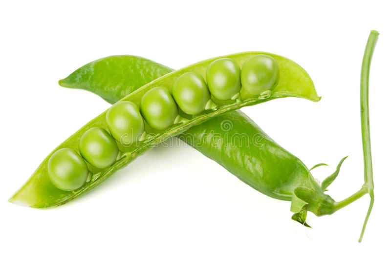 Fresh Green Pea Pod Stock Photos