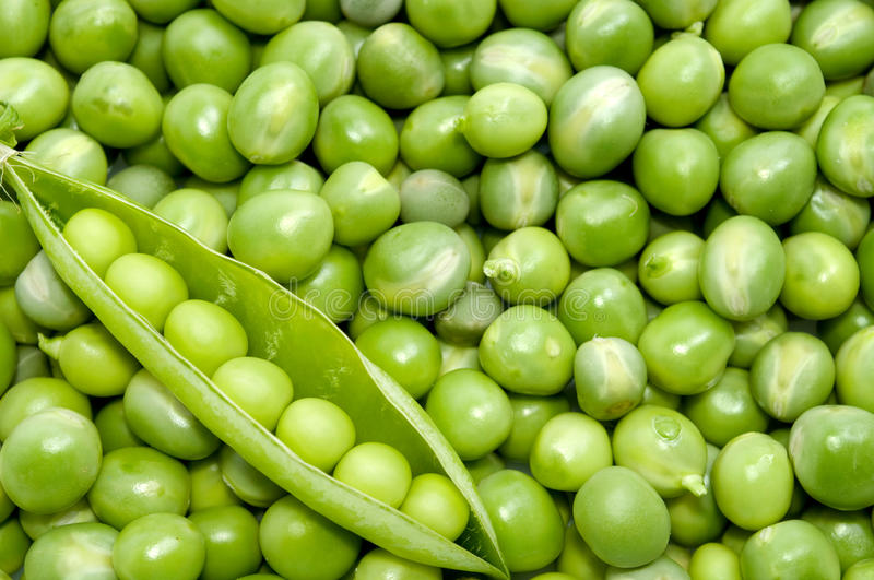 Fresh green pea pod on peas background. Directly above shot stock photography