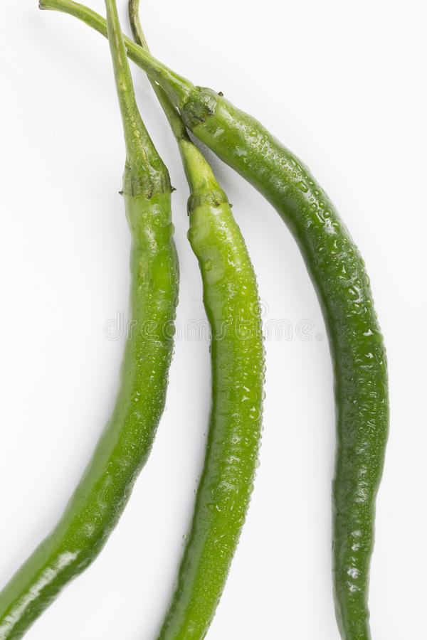 Fresh Green peppers. On white background royalty free stock images