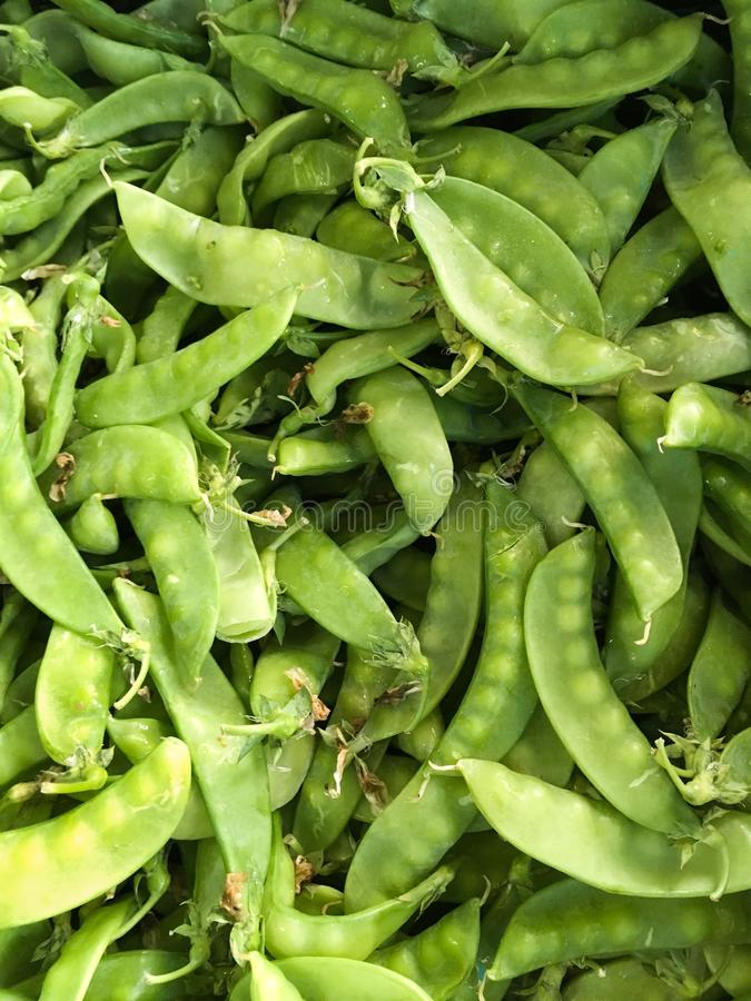 Fresh green pisum sativum. In market royalty free stock photo