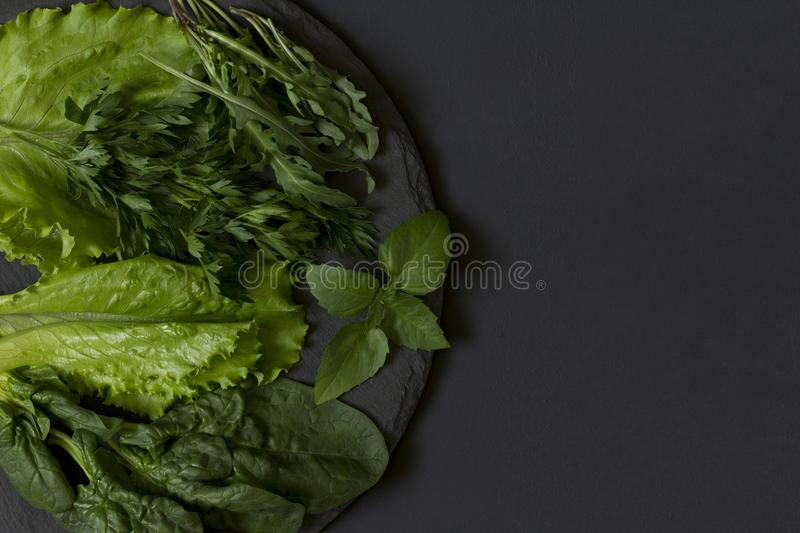 Fresh green on a plate of slate on a black background. Top view royalty free stock photos