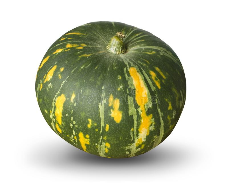Green pumpkin isolated. Fresh green pumpkin isolated on white background royalty free stock images