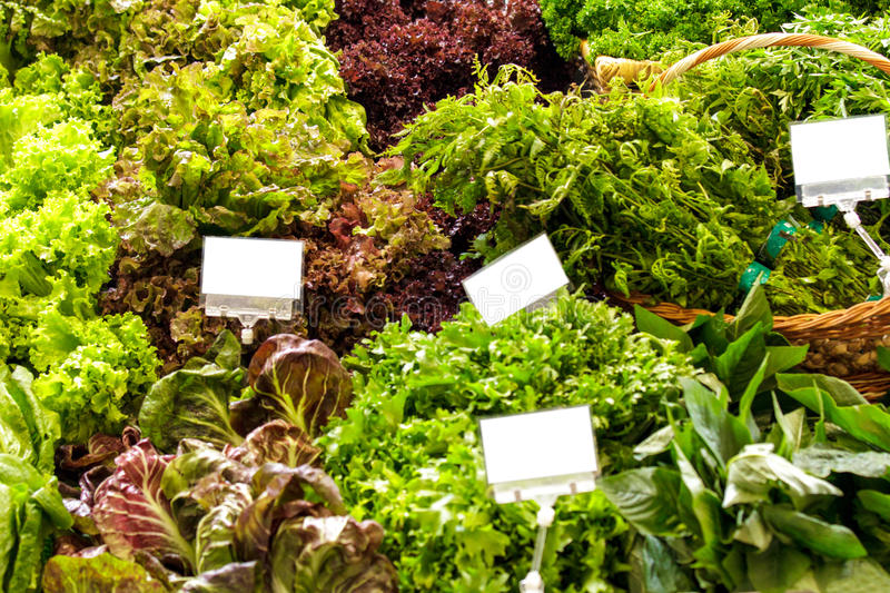 Fresh green and red kale with variuos vegetables royalty free stock photo