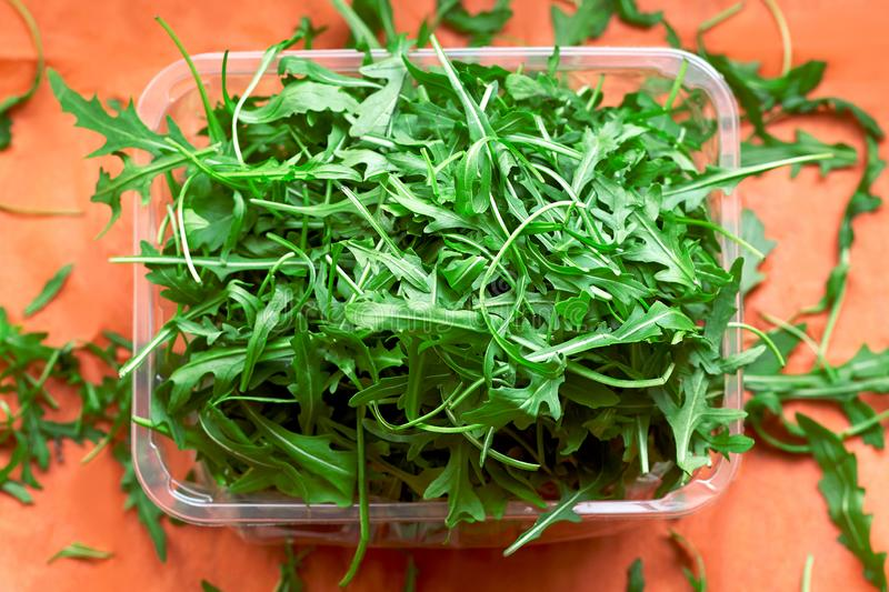 Fresh green rucola salad in plastic bowl on  bright coral background. Top view, copy space stock photo