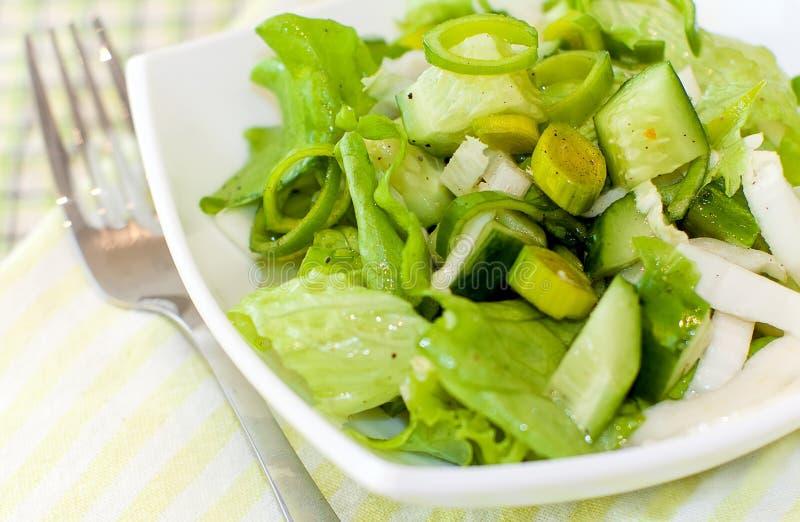 Fresh green salad #7. Fresh green salad with leek and cucumbers royalty free stock photos