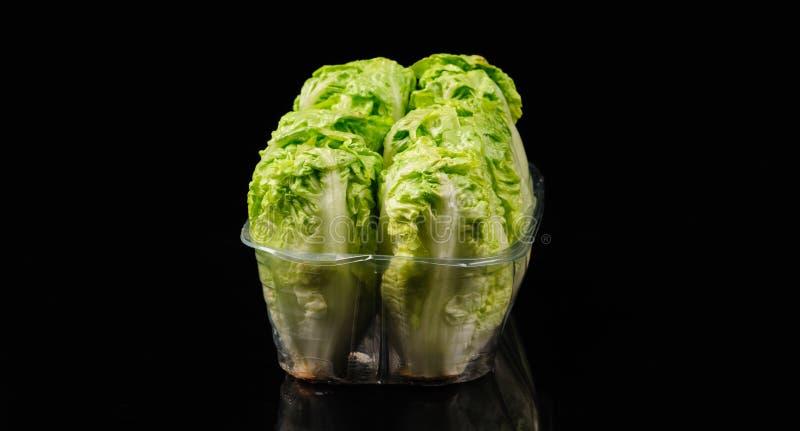 Fresh green salad. On the black background, organic, ingredient, vegetable, lettuce, food, vitamin, healthy, leaf, vegetarian, freshness, raw, nutrition royalty free stock photos