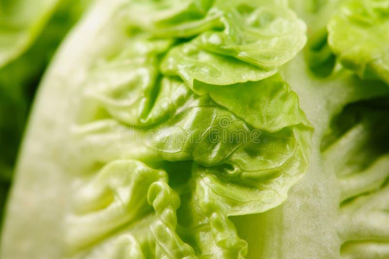Fresh green salad. On the black background, organic, ingredient, vegetable, lettuce, food, vitamin, healthy, leaf, vegetarian, freshness, raw, nutrition stock photography