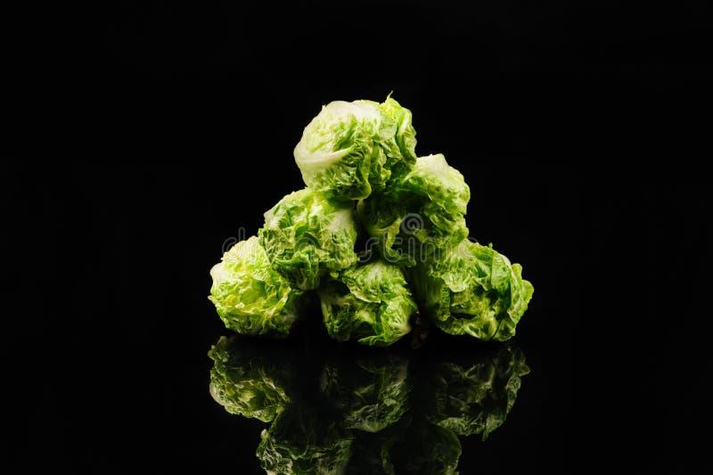 Fresh green salad. On the black background, organic, ingredient, vegetable, lettuce, food, vitamin, healthy, leaf, vegetarian, freshness, raw, nutrition royalty free stock photo