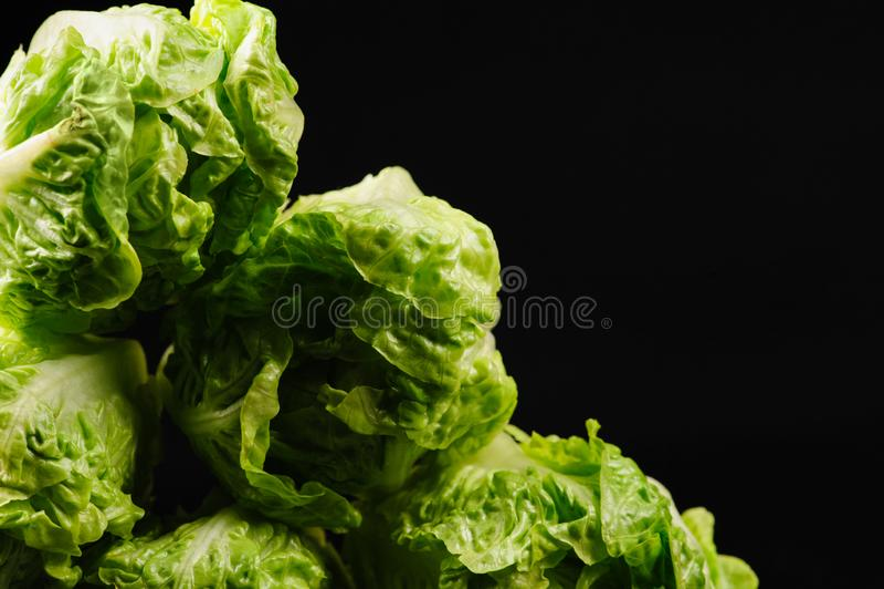 Fresh green salad. On the black background, organic, ingredient, vegetable, lettuce, food, vitamin, healthy, leaf, vegetarian, freshness, raw, nutrition stock image