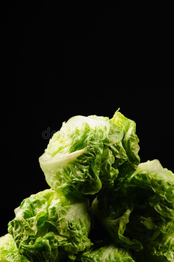Fresh green salad. On the black background, organic, ingredient, vegetable, lettuce, food, vitamin, healthy, leaf, vegetarian, freshness, raw, nutrition stock images