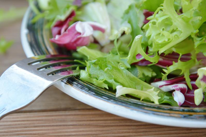 Fresh green salad plate, with spinach, arugula, romaine and lettuce. Healthy food. Wooden table. Fresh green salad plate, with spinach, arugula, romaine and stock photos