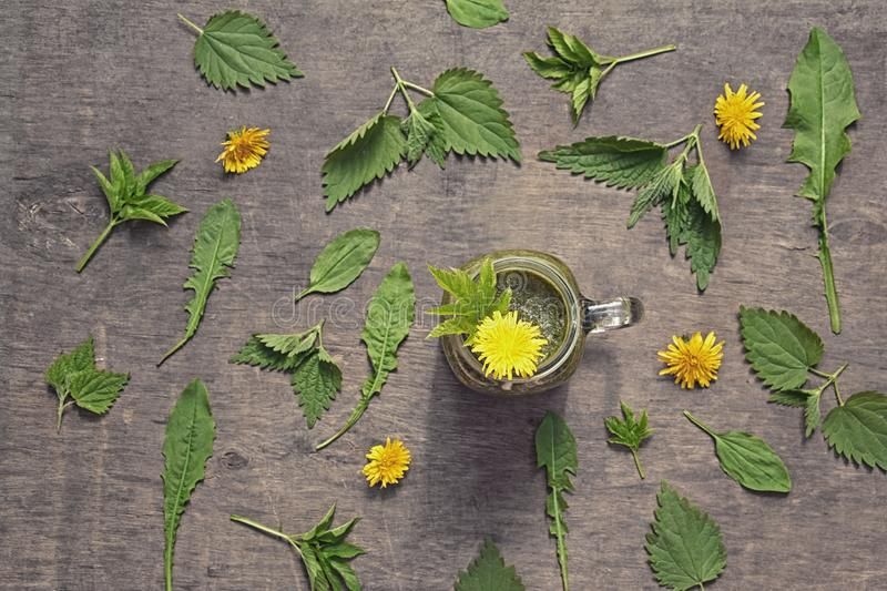 Fresh green smoothie with wild herbs: nettle, dandelion, goutweed, plantain, in mason jar on rustic wooden background. royalty free stock images