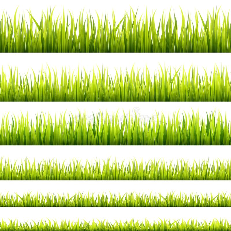 Fresh and green spring grass sprouts and herbal growth seamless banners. Springtime lawn panorama in a sunlight. Foliage lines for. Website footers and stock illustration