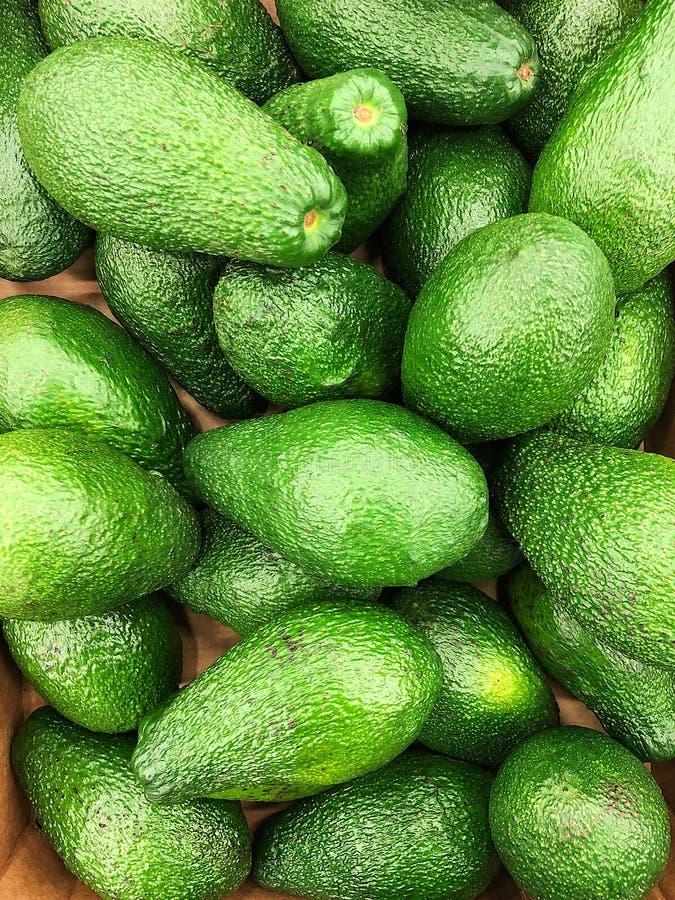 Fresh green tasty avocados on the market royalty free stock photography